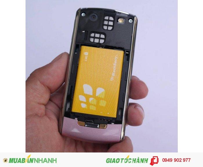 BlackBerry 81102