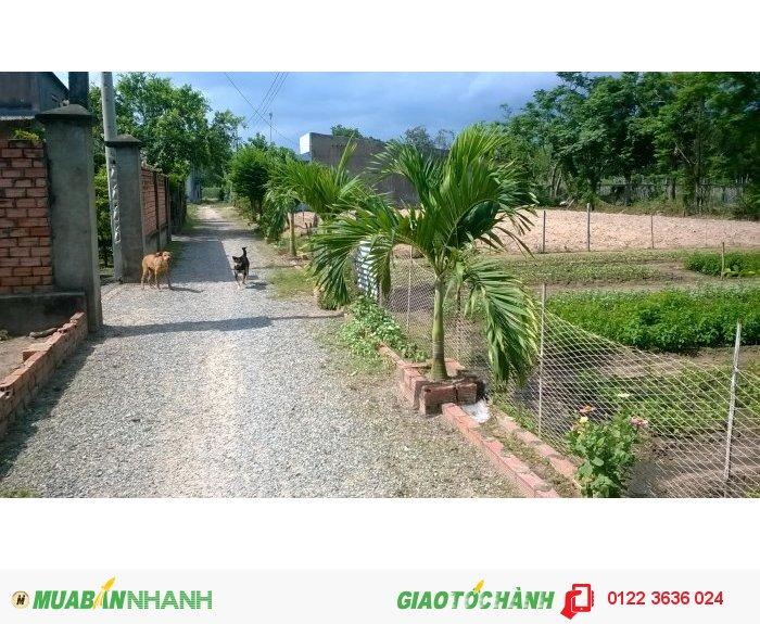 Đất gần bờ sông tiện làm trang trại, nhà vườn, nghỉ dưỡng, gần khu du lịch Bò Cạp Vàng.
