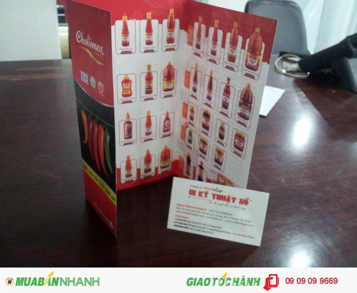 In brochure cho Cholimex - công ty thực phẩm | Sử dụng để gửi đến khách hàng tạ...