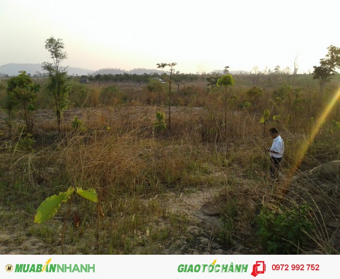 Cần bán Đất dự án huyện Đồng Xuân, Tỉnh Phú Yên, 15 triệu/ 1 ha