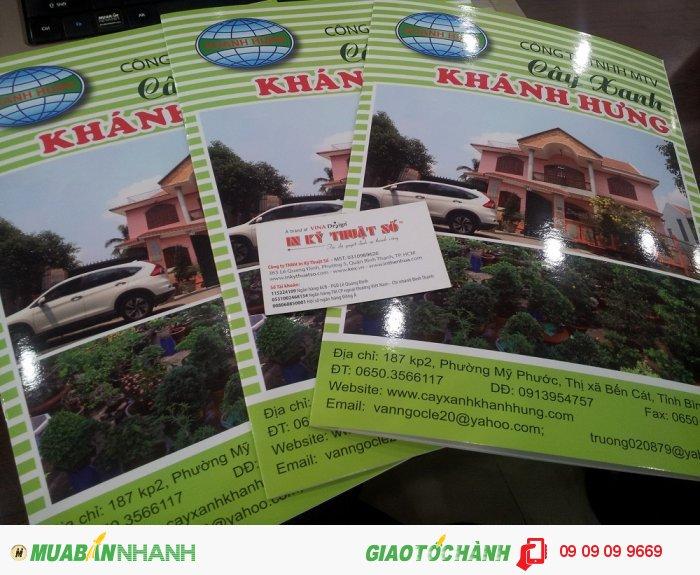 In catalogue cho công ty cây xanh Khánh Hưng | Giới thiệu chi tiết các mẫu cây xanh c�...