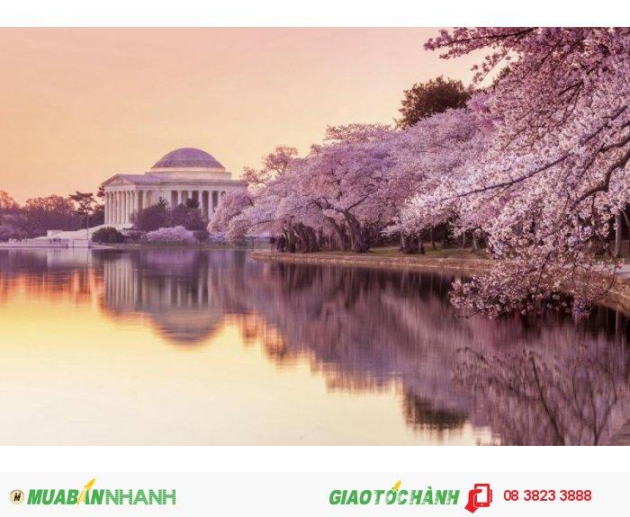 Washington DC, Mỹ .  Ảnh: Internet Giá vé khứ hồi (gồm thuế): 861 USD Thời gian khởi hành: 1/04/16-30/06/16