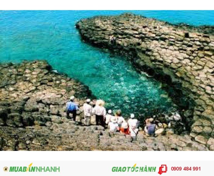 Phú Yên - Hoa Vàng Trên Cỏ Xanh - Quy Nhơn - Tây Sơn Hào Kiệt