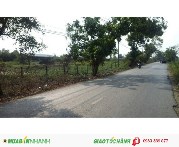 Bán đất mặt tiền xã Tân Qúy Tây Huyện Bình Chánh giá 1,4 triệu /M2,dt 14000m2