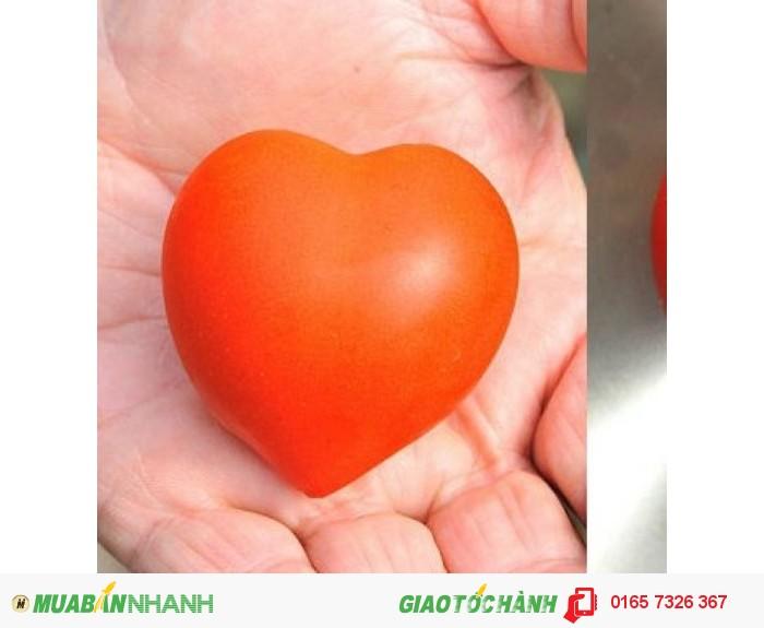 Hạt giống cà chua hình trái tim0