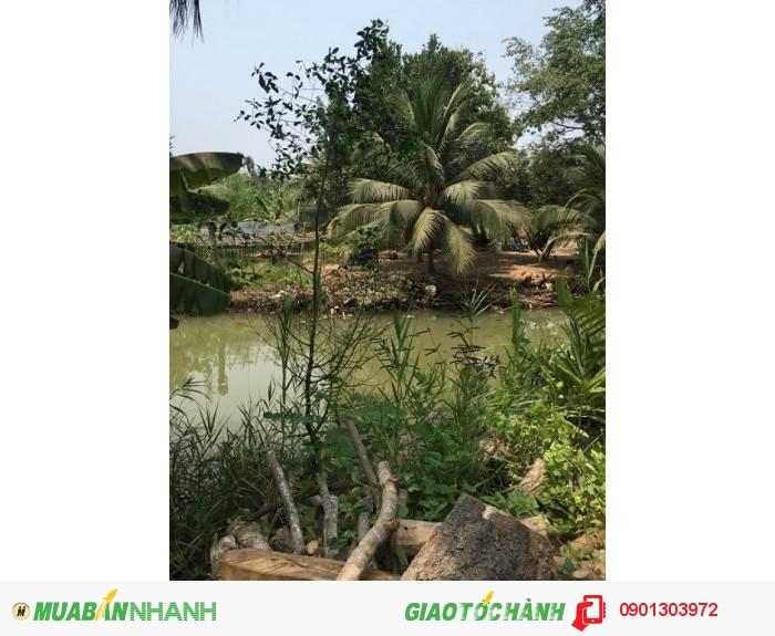 Bán đất mặt tiền sông Đồng Nai, 3144m2, đường số 5, Long Phước Q9 3.5tr/m2