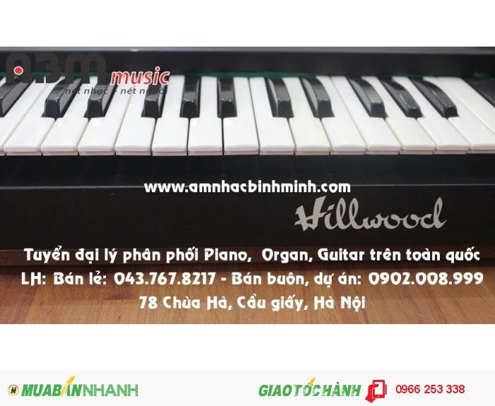 Đàn Organ Hillwoocl giá 800.000 vnđ3