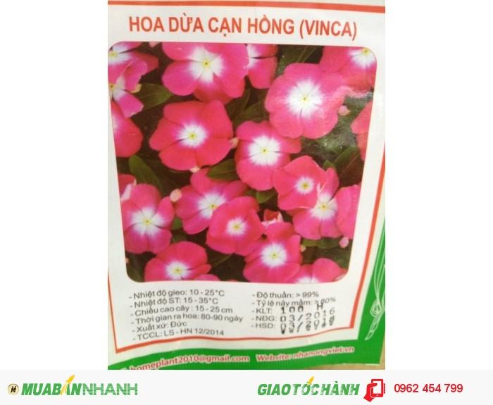 Chuyên cung cấp hạt giống hoa F1 các loại0
