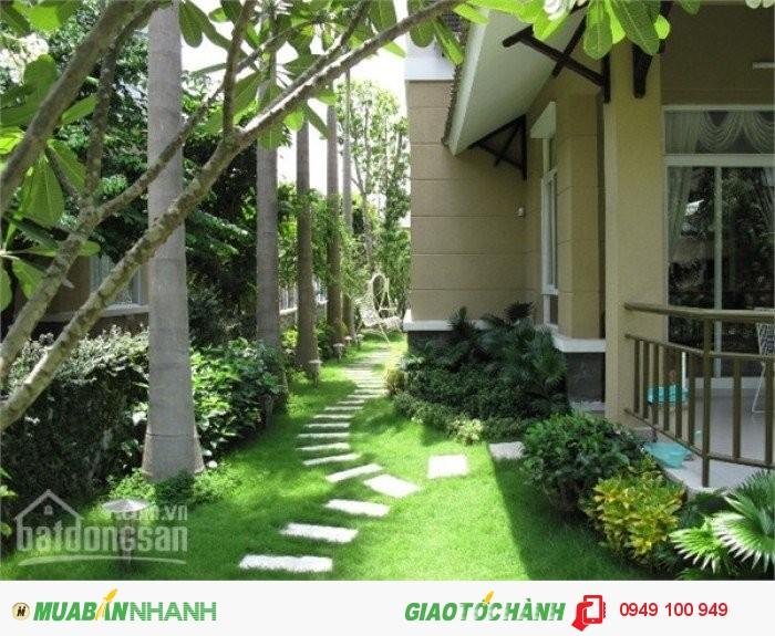 Biệt thự mini nằm trong khu sinh thái 17ha 220m2