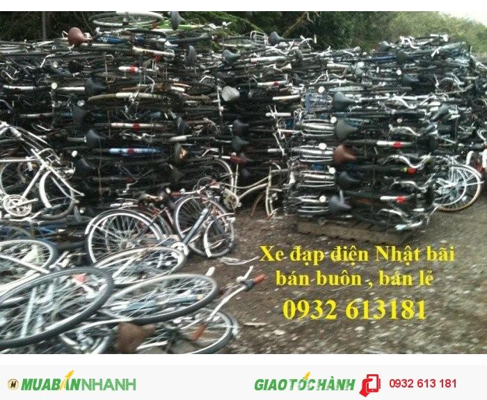 Xe đạp điện Nhật nội địa rẻ nhất