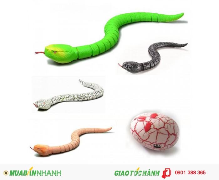 Các khớp nối linh hoạt giúp rắn di chuyển nhanh nhẹn