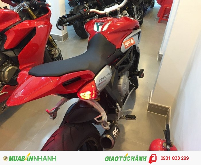 Cần Bán AGUSTA RIVALE 800cc