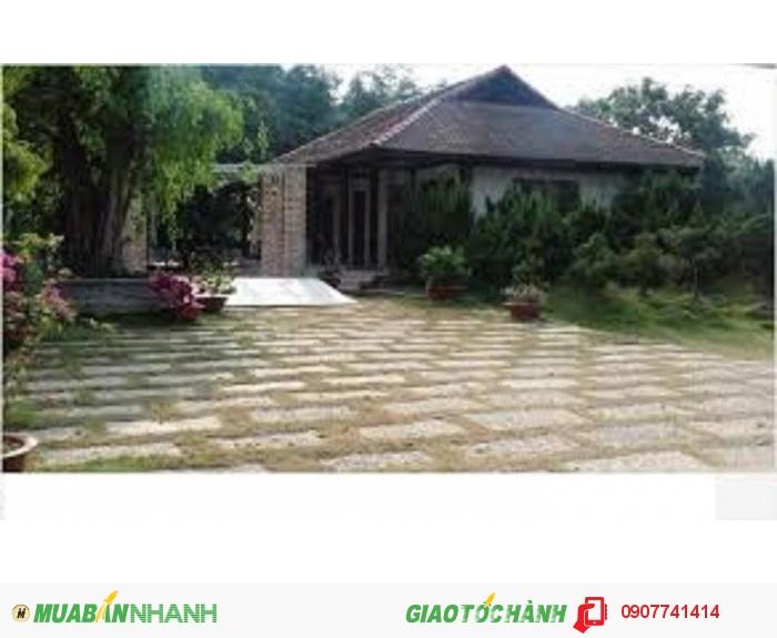 1007m2/1,42 tỷ: Đất thổ vườn ven sông Sài Gòn: Nghỉ dưỡng:nhà vườn, trồng rau sạch - đầu tư lâu dài