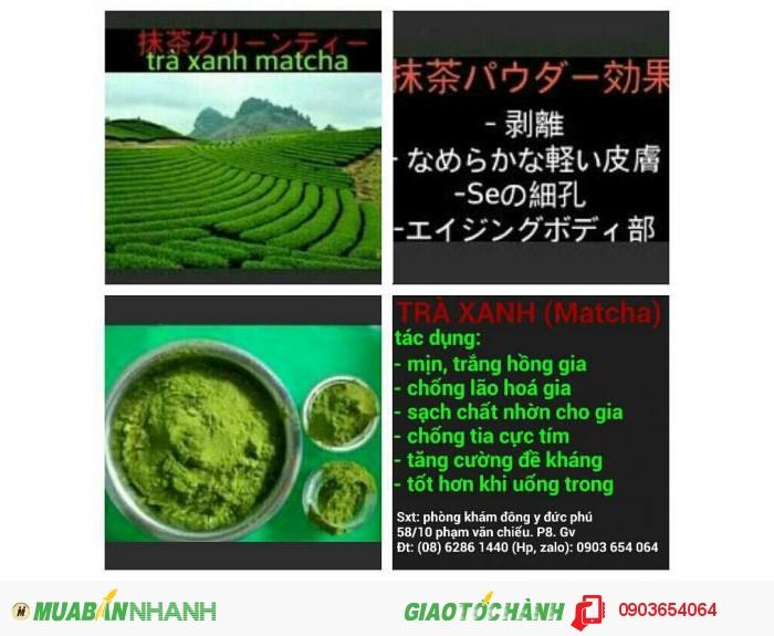 Tìm đại lý phân phối bột trà xanh, đông dược spa0