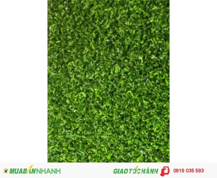 Cung cấp cỏ nhân tạo, cỏ sân bóng cỏ sân vườn trang trí2