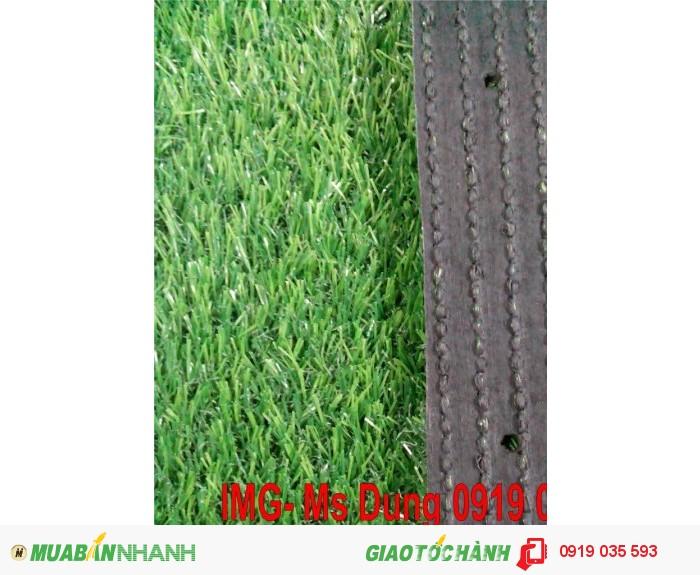 Cung cấp cỏ nhân tạo, cỏ sân bóng cỏ sân vườn trang trí3