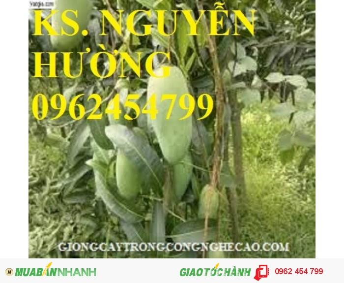 Chuyên cung cấp cây giống xoài thái (xoài thái lan)3