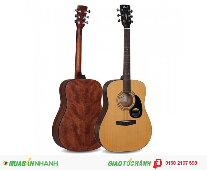 Đàn Guitar Acoustic Cort AD810