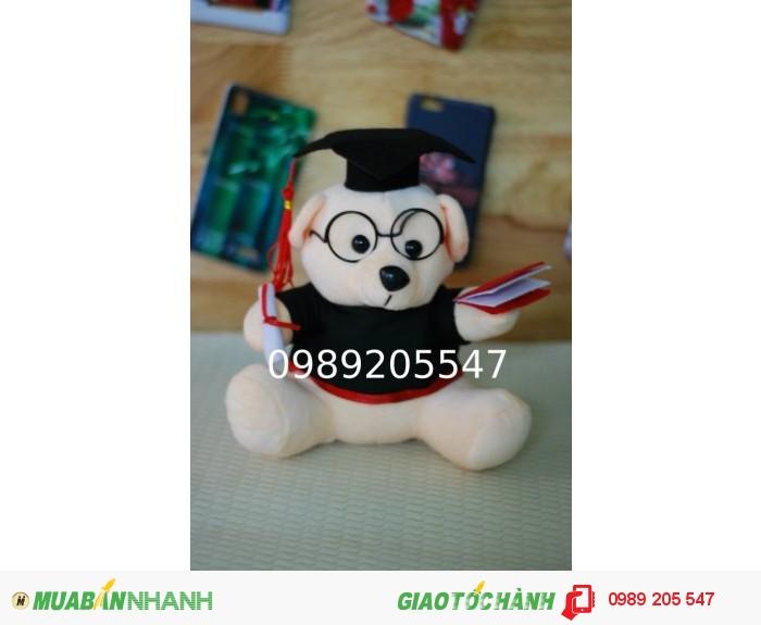 gấu tốt nghiệp tphcm1