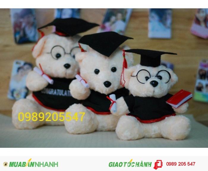 gấu tốt nghiệp giá rẻ0