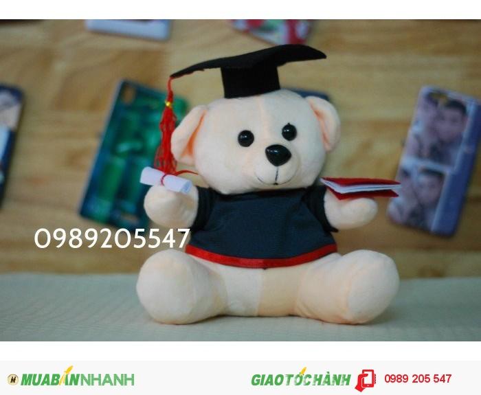 gấu tốt nghiệp, gấu cử nhân đà nẵng1