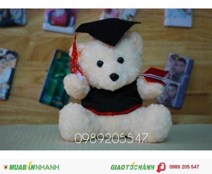 gấu tốt nghiệp tại đà nẵng0