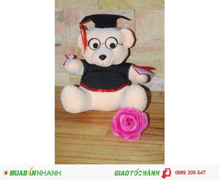 gấu tốt nghiệp giá rẻ sỉ và lẻ Cần Thơ1