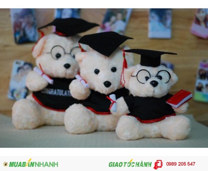 gấu tốt nghiệp cần thơ2