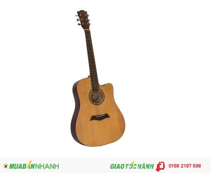 Cần bán Đàn Guitar Acoustic SUNNY 1041