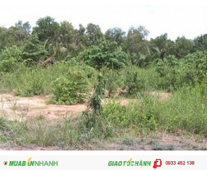 Bán đất diện tích 3000m2: đất vườn với giá gốc, chính chủ chỉ 1,4tr/m2