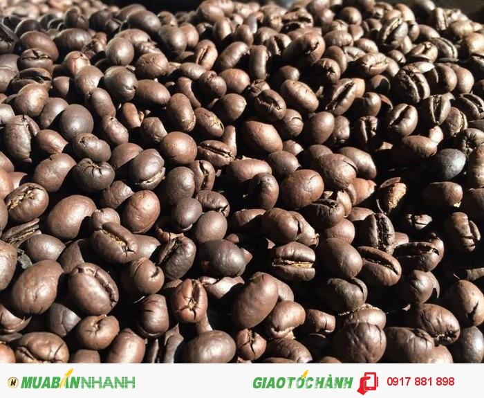 tỷ lệ 100% cà phê hạt Robusta CuLi Buôn Ma Thuột0