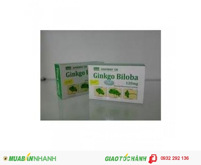 Ginkmax 120mg hộp 100 viên0