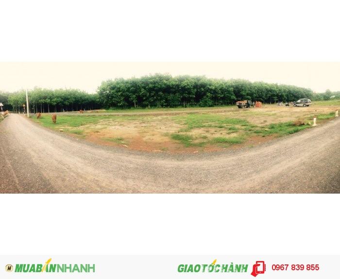 Đất nền dự án, Khu dân cư xã đồi 61, huyện Trảng Bom , Tỉnh Đồng Nai
