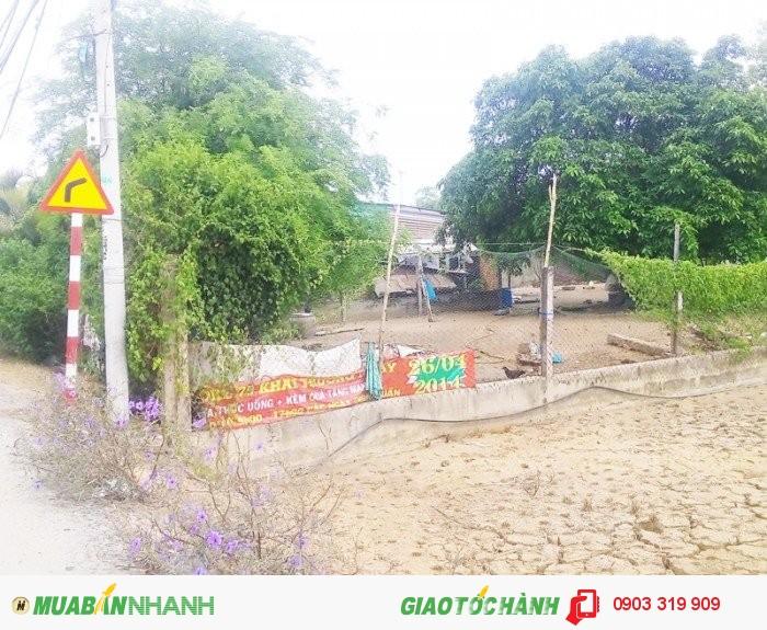 Bán 3100m2 đất xây xưởng, kinh doanh Hương lộ 11, Bình Chánh.