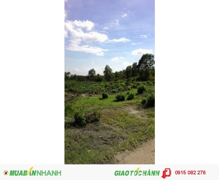 Đất MT Nguyễn Bình 700m2(20X35) giá rẻ chỉ 3,1 tr/m2