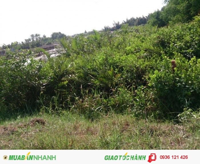 Đất Biệt Thự Vườn 2663m2 ( 32m X 62m),View Sông, Hiệp Phước, Nhà Bè. Chỉ 1,5tr/M2