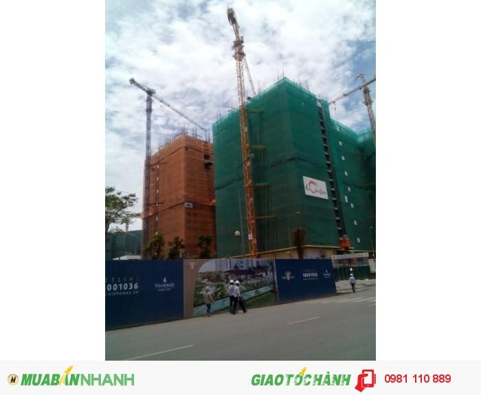 Cung cấp lưới bao công trình chất lượng cao tại Hải Phòng