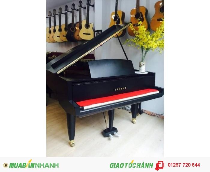 Piano Store: Hệ thống cung cấp sỉ&lẻ các loại Piano và guitar UY TÍn Nhất TP.HCM !!!