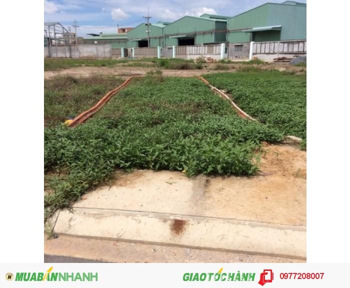 Đất nền KDC Dream Home Bình Tân - 785TR/NỀN