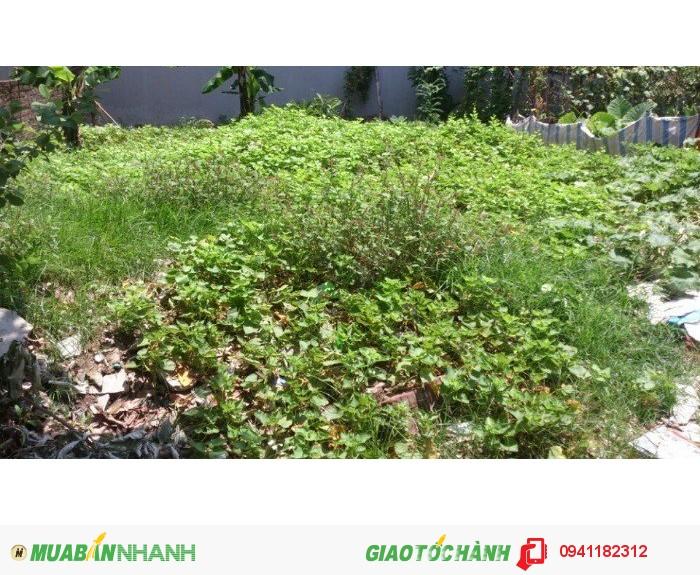 Chính chủ cần bán 33m2 đất tổ 11 Mậu Lương  gần khu đô thị Kiến Hưng, Hà Đông. Giá 27tr/m2.