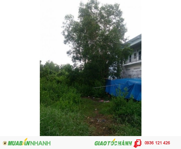 Đất thổ cư 122m2 Ngang 7, Nguyễn Văn Tạo, Nhà  Bè. SHR 820tr