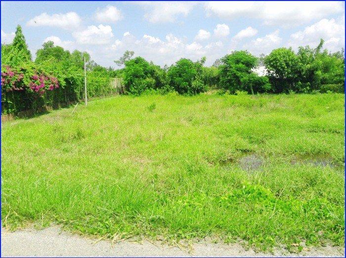 Đất Xây Kho Xưởng, Biệt Thự Vườn 1.069m Đa Phước, Bình Chánh