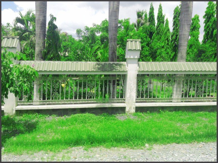 Bán 267m Đất Thổ Cư 2 Mặt Tiền Đường Xây Biệt Thự Vườn, Đa Phước Bình Chánh