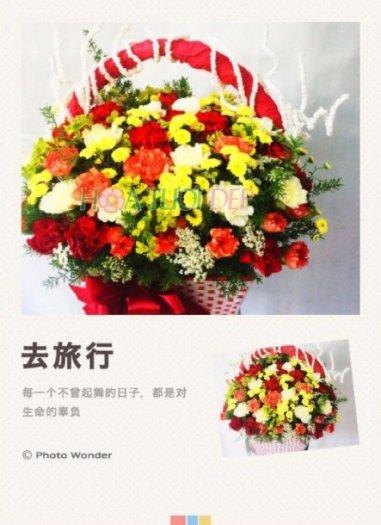 Hoa Chúc Mừng - CM127, giá 600.000đ0