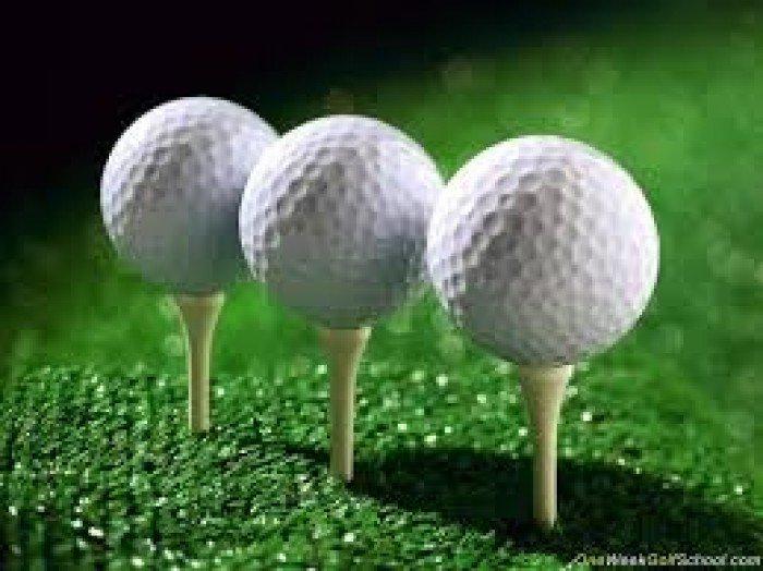 chuyên cung cấp các loại bóng golf (hay banh golf) nhập khẩu từ Đài Loan4