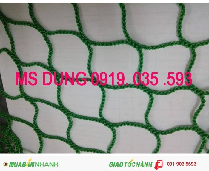 Lưới an toàn 2,5cm, 5cm, 10cm, lưới công trình các loại tại hà nội, 5