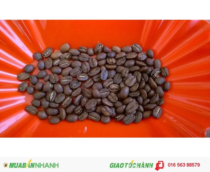 Cà phê Moka sạch Đà Lạt1