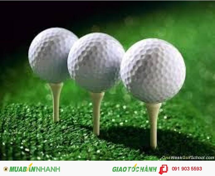 Bóng golf 2 lớp nổi đánh ra hồ2