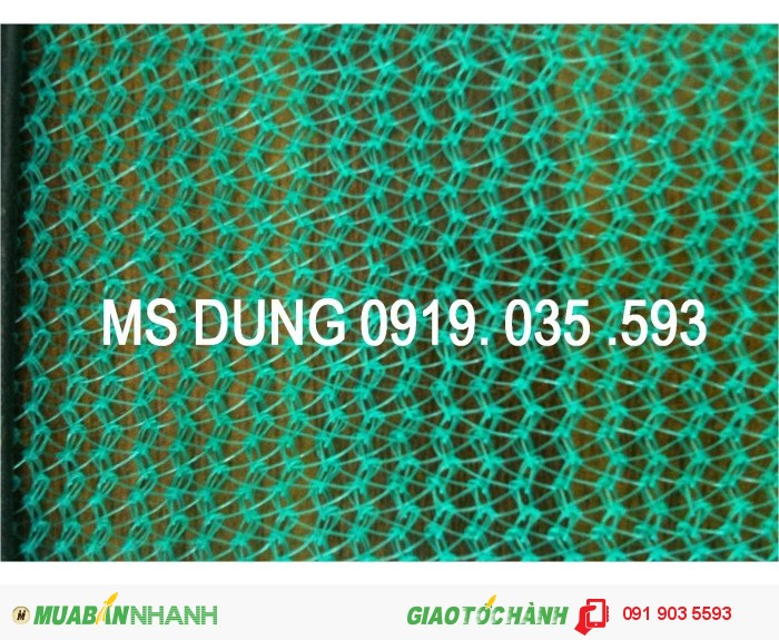 Phụ kiện bảo hộ lao đông cho công trình: lưới, lưới nhựa, lưới dù, lưới 2.5cm8