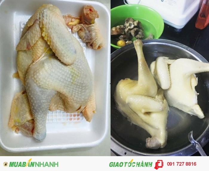 Gà luộc rau răm thơm ngon bổ dưỡng - sản phẩm hoàn tất chỉ việc dùng